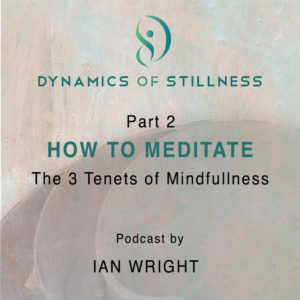 Read more about the article Part 2 HOW TO MEDITATE