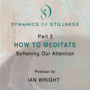 Read more about the article Part 3 HOW TO MEDITATE