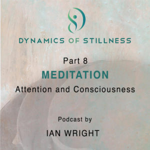 Read more about the article Part 8 MEDITATION