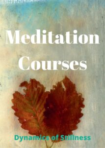 Stillness Practices – Online Course Coming Soon !